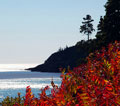 midcoast main coastal foliage drives