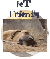 Maine Pet Friendly Lodging