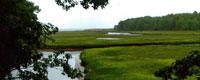 Rachel Carson Wildlife Refuge,Wells ME attraction