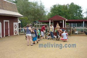 York Wild Kingdom Zoo