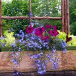 Northern New England Home Garden Flower Show annual Fryeburg Maine event