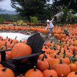 Pumpkin Patch Trolley Weekend